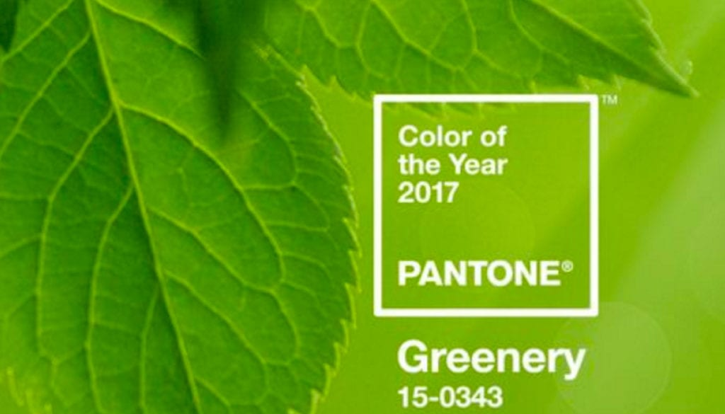 Pantone color of 2017
